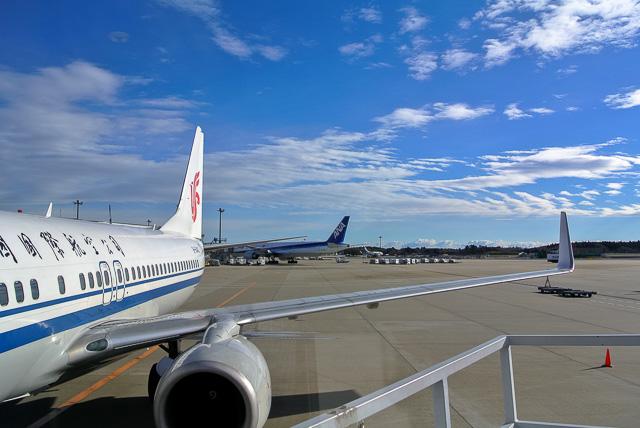 気を遣ってCAにしてみた@成田空港